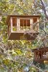 20061016esadai.jpg