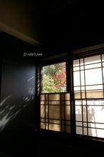 20101209_079.jpg
